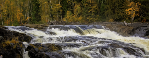 A photo of the rapids along the river with autumn colours in the forest