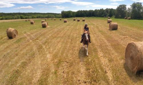Woman riding a horse through a hay field
