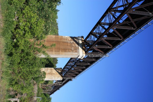 Large bridge above forest