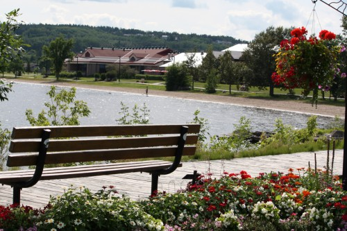 Scenic view of the park bench in front of the lake, surrounded by flowers
